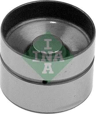 INA 420 0022 10 Punteria